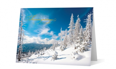passer american custom corporate holiday greeting card thumbnail