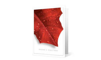 harter secrest corporate holiday greeting card thumbnail