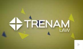 2016 Trenam - custom corporate holiday ecard thumbnail