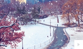 Park Grandeur ecard