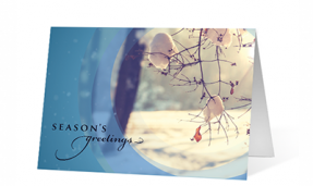 Moment Of Light Season's Greetings Card