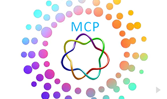 MCP 2016
