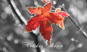 Colorize Christmas Season Greeting e-card