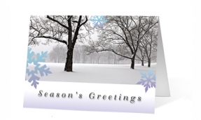 Peaceful Forest Moments corporate holiday greeting card thumbnail