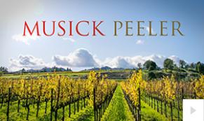 2017 Musick Peeler - custom corporate holiday ecard thumbnail