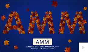 2017 AMM - custom corporate holiday ecard thumbnail