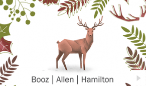 2017 Booz Allen - custom corporate holiday ecard thumbnail