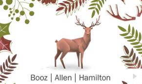 2017 Booz Allen - custom corporate holiday ecard thumbnail