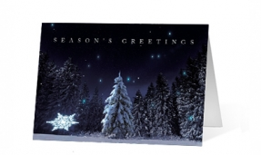 18. Forest Wish corporate holiday print thumbnail