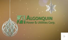 2018 Liberty Utilities APUC - Photo Ornaments corporate holiday ecard thumbnail