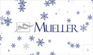 Mueller 2018