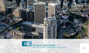 Gursey Schneider 2018
