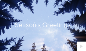 forest rays corporate holiday ecard thumbnail