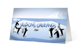2019 penguin presence corporate holiday greeting card thumbnail