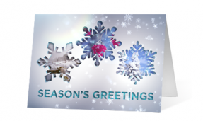 2019 sparkling views nature corporate holiday greeting card thumbnail