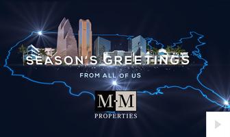2019 MM Properties