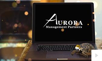 Aurora 2020