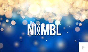 Niimbl 2020
