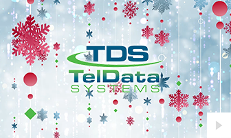 TelData Systems (2020)